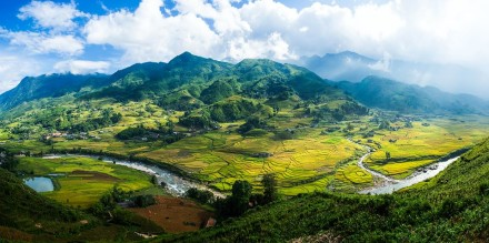 Sapa rice fields in summer